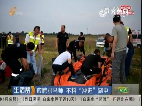 """淄博:应聘驯马师 不料""""冲进""""湖中"""