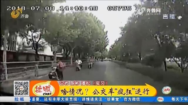 """【凡人善举】济南:啥情况?公交车""""疯狂""""逆行"""