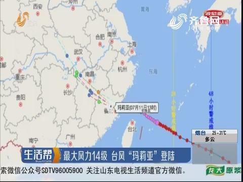 """最大风力14级 台风""""玛莉亚""""登陆"""