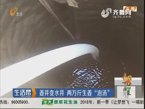 """潍坊:姜井变水井 两万斤生姜""""泡汤"""""""