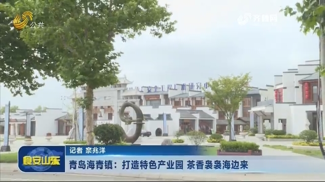 20180713《食安山东》:青岛海青镇——打造特色产业园 茶香袅袅海边来