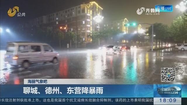 海丽气象吧:聊城、德州、东营降暴雨