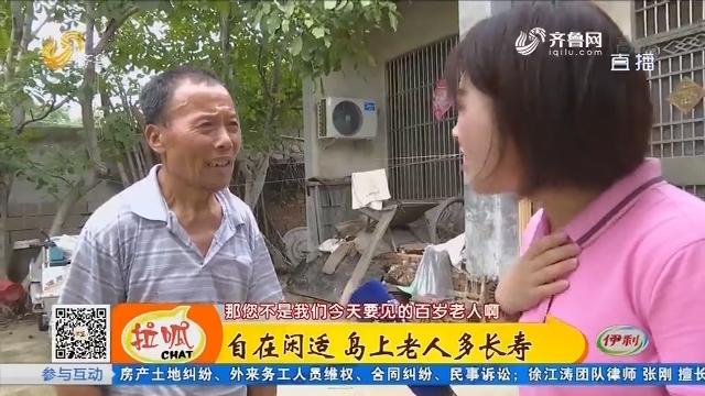 济宁:自在闲适 岛上老人多长寿
