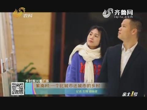 【乡村振兴看广东】紫南村:一个比城市还城市的乡村
