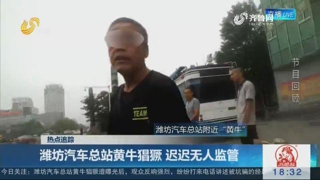 【热点追踪】潍坊汽车总站黄牛猖獗 迟迟无人监管