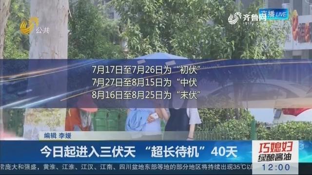 """7月17日起进入三伏天 """"超长待机""""40天"""