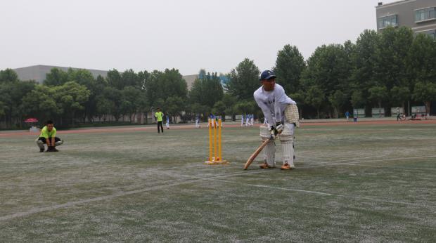 """""""玲珑轮胎杯""""山东省板球锦标赛在济南举行"""