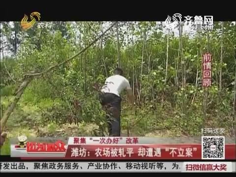 """【聚焦""""一次办好""""改革】潍坊:农场被轧平 却遭遇""""不立案"""""""