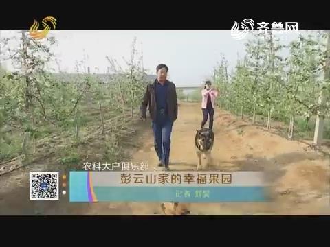 农科大户俱乐部:彭云山家的幸福果园