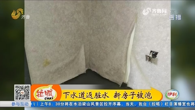 济南:下水道返脏水 新房子被泡