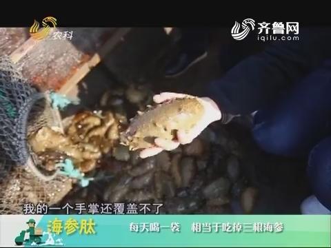 20180720《中国原产递》:海参肽