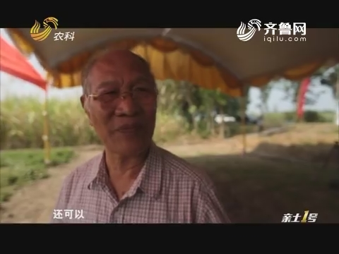 """""""一带一路""""上的山东农业——印尼行:推动中印尼合作的八旬华侨"""