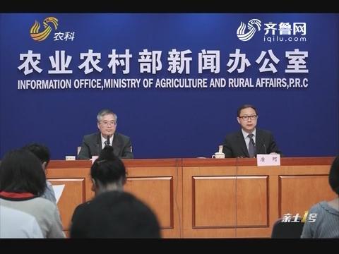 农业农村部:上半年农产品供给总体充裕 价格偏弱