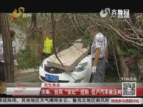 """【民生热点】济南:台风""""安比""""过后 住户汽车被压树下"""