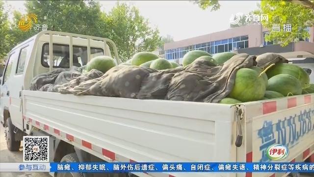 宁津:停车卖瓜 要罚2万?
