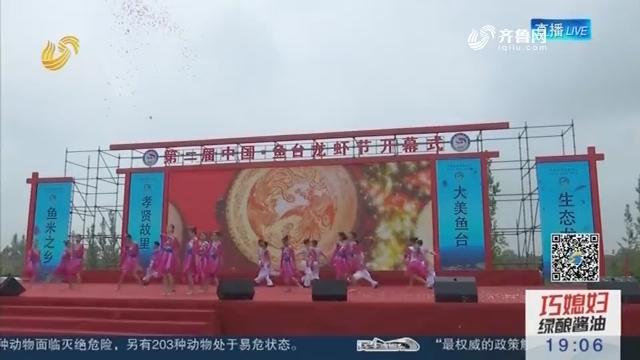 第二届中国·鱼台龙虾节开幕
