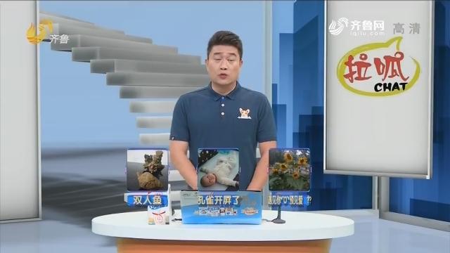2018年07月30日《拉呱》抽奖