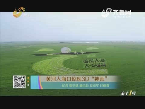 """黄河入海口惊现3D""""神画"""""""