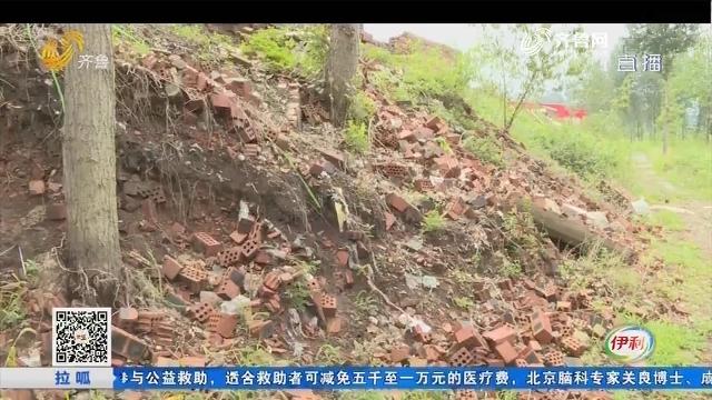枣庄:田地边上 到处是废弃红砖