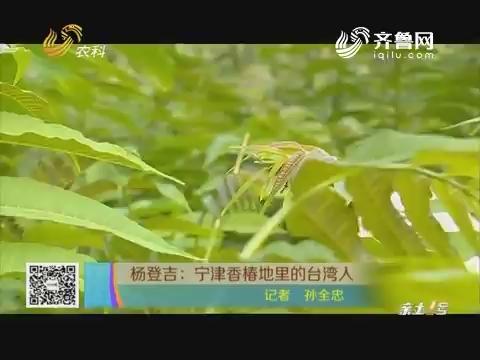 杨登吉:宁津香椿地里的台湾人