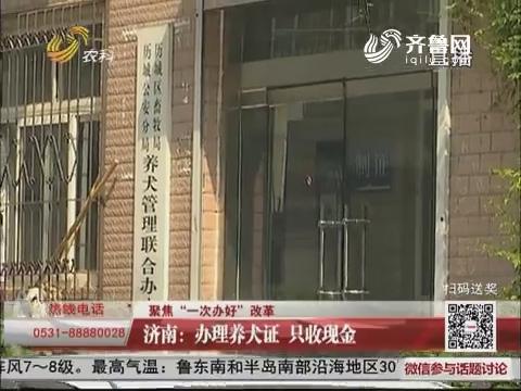 """【聚焦""""一次办好""""改革】济南:办理养犬证 只收现金"""