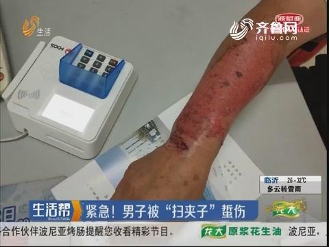 """淄博:紧急!男子被""""扫夹子""""蜇伤"""
