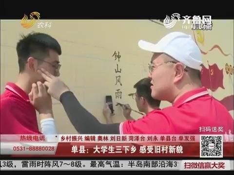 【乡村振兴】单县:大学生三下乡 感受旧村新貌
