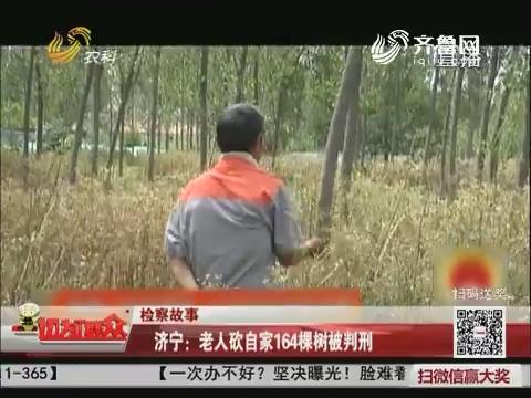 【检察故事】济宁:老人砍自家164棵树被判刑