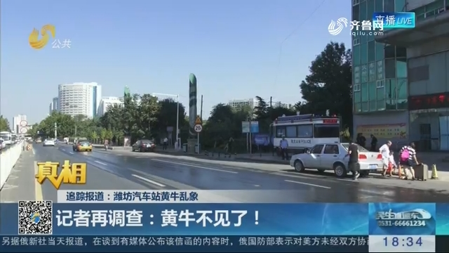 【真相】追踪报道:潍坊汽车站黄牛乱象——记者再调查 黄牛不见了!