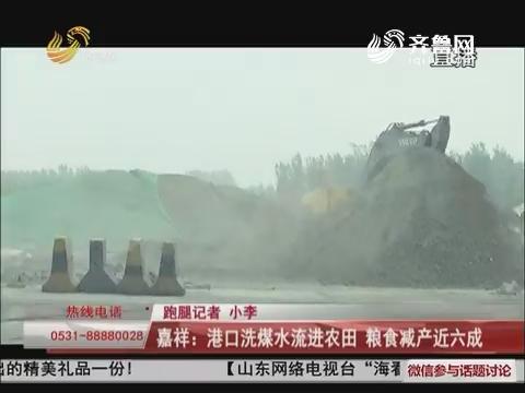 嘉祥:港口洗煤水流进农田 粮食减产近六成