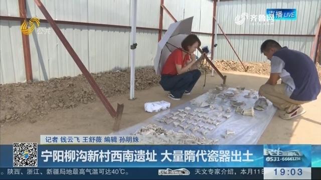 宁阳柳沟新村西南遗址 大量隋代瓷器出土