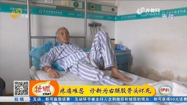 疼痛难忍 诊断为右腿股骨头坏死
