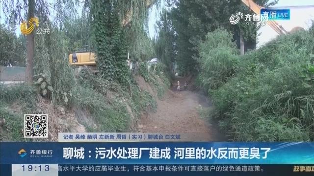 【重磅问政】聊城:污水处理厂建成 河里的水反而更臭了
