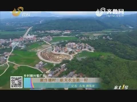 【乡村振兴看广东】新作塘村:航天农业第一村