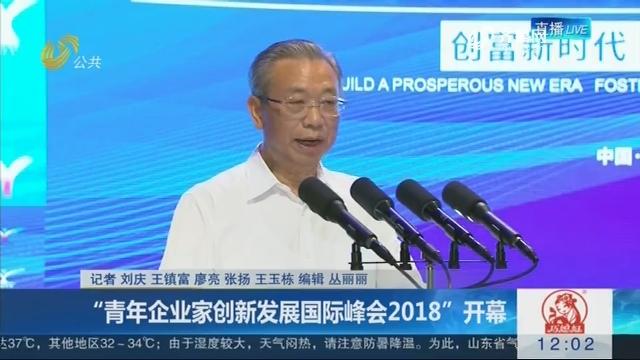 """""""青年企业家创新发展国际峰会2018""""开幕"""