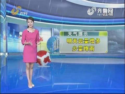 看天气:明天云量增多 少量降雨
