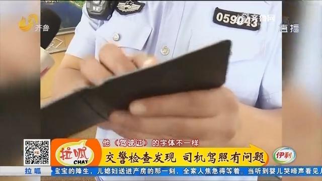 济宁:交警检查发现 司机驾照有问题