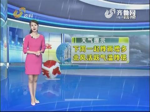 看天气:8月13日起降雨增多 北风活跃气温降低