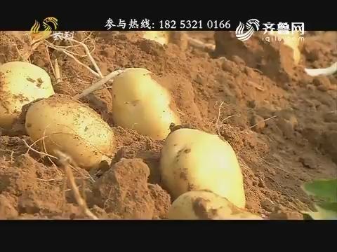 小螺号·农技服务直通车:死亡土豆复活记