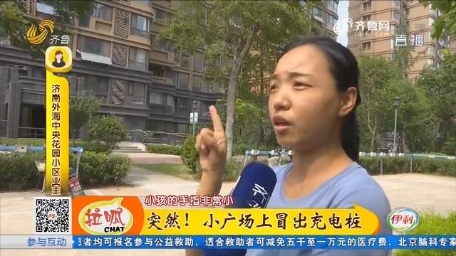 济南:突然!小广场上冒出充电桩