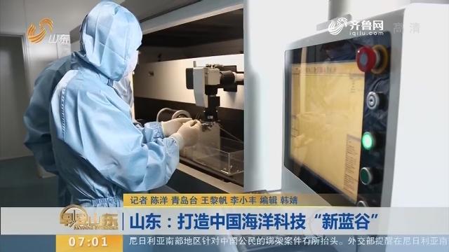 """山东:打造中国海洋科技""""新蓝谷"""""""