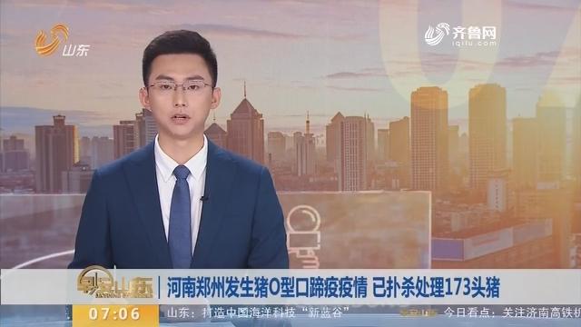 河南郑州发生猪O型口蹄疫疫情 已扑杀处理173头猪