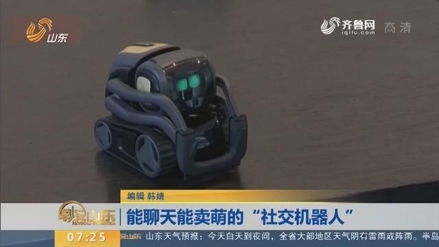 """能聊天能卖萌的""""社交机器人"""""""