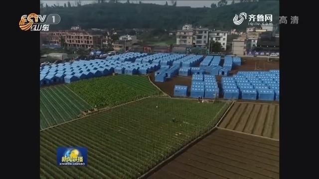 联播快讯:云南通海抗震救灾工作有序展开