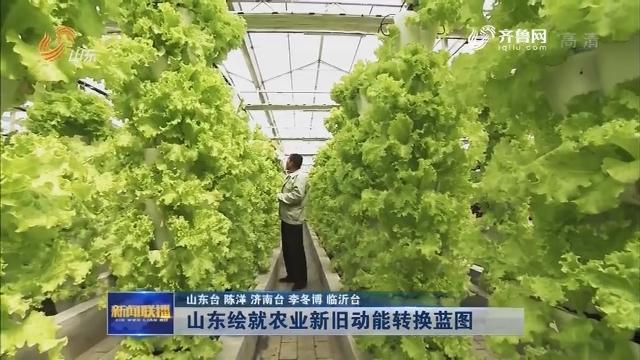 【权威发布】山东绘就农业新旧动能转换蓝图