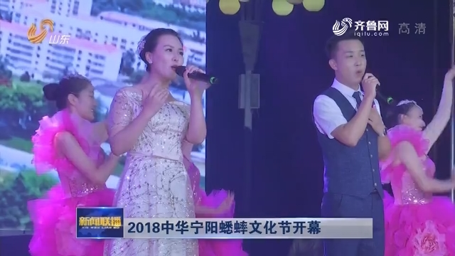 2018中华宁阳蟋蟀文化节开幕
