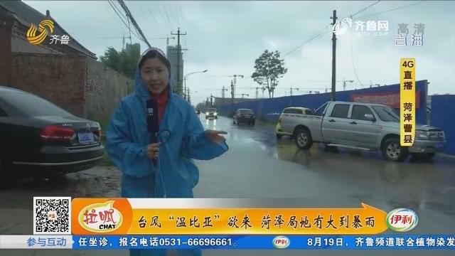 """台风""""温比亚""""欲来 菏泽局地有大到暴雨"""