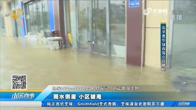 东平:雨水倒灌 小区被淹