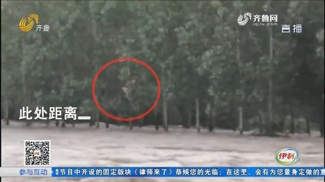 莒县:水位暴涨 村民不慎被卷入洪水