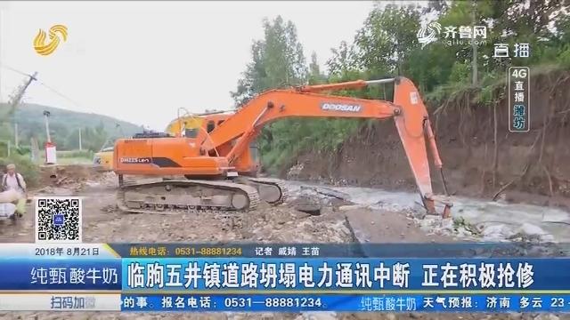 【4G直播】临朐五井镇道路坍塌电力通讯中断 正在积极抢修